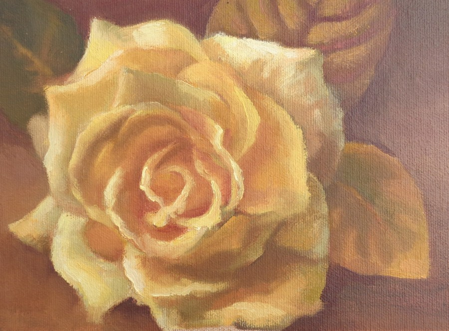 Studio - Yellow Rose - 6x8 - Available